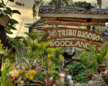 Tribu Bagobo Woodlands Resort