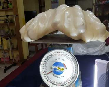 Image of Giant Pearl in Palawan Philippines Went Viral