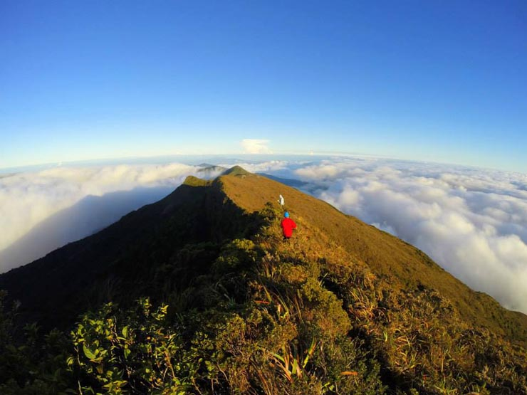 Mount Halcon