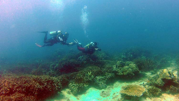 Diving in Agta Beach Resort Biliran