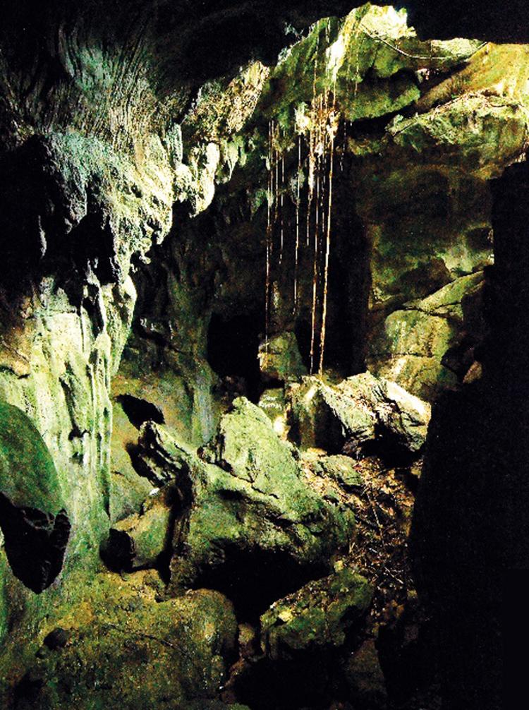 Cadig Cave