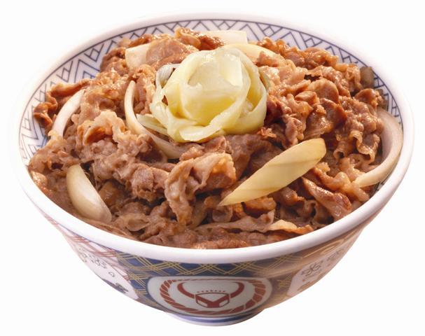 beef-bowl-gyudon