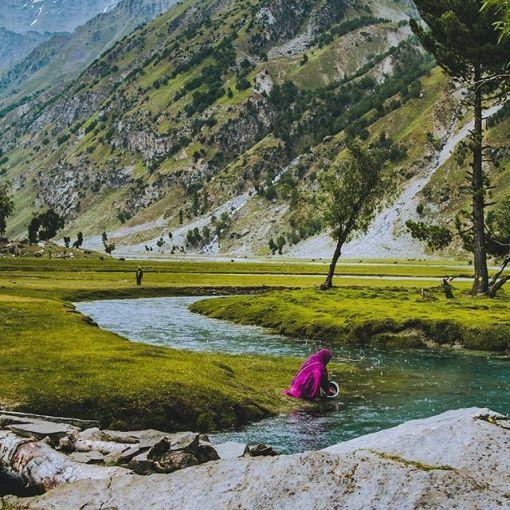 Nalter valley Hunza Pakistan