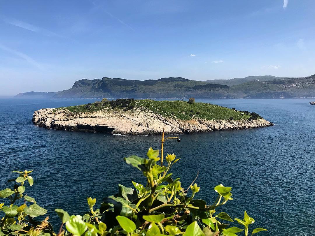 نتيجة بحث الصور عن جزيرة طافشان بودروم