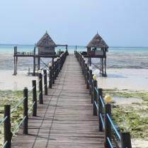 Zanzibar (10)