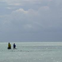 Zanzibar (3)