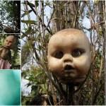 Жуткие куклы безумного отшельника