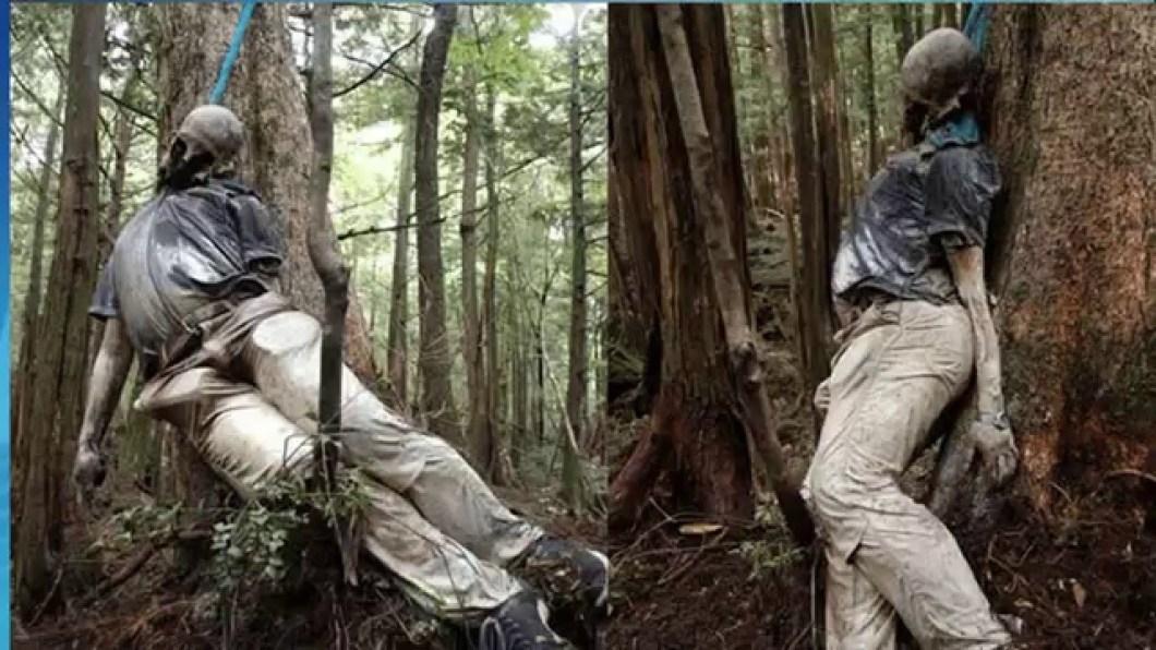 труп в лесу аокигахара