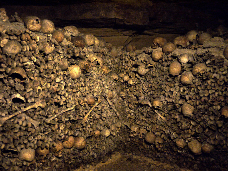 стены из костей