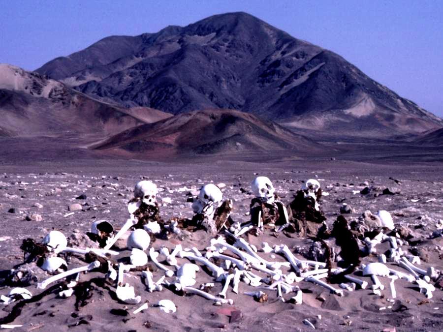 кости пустыни наска