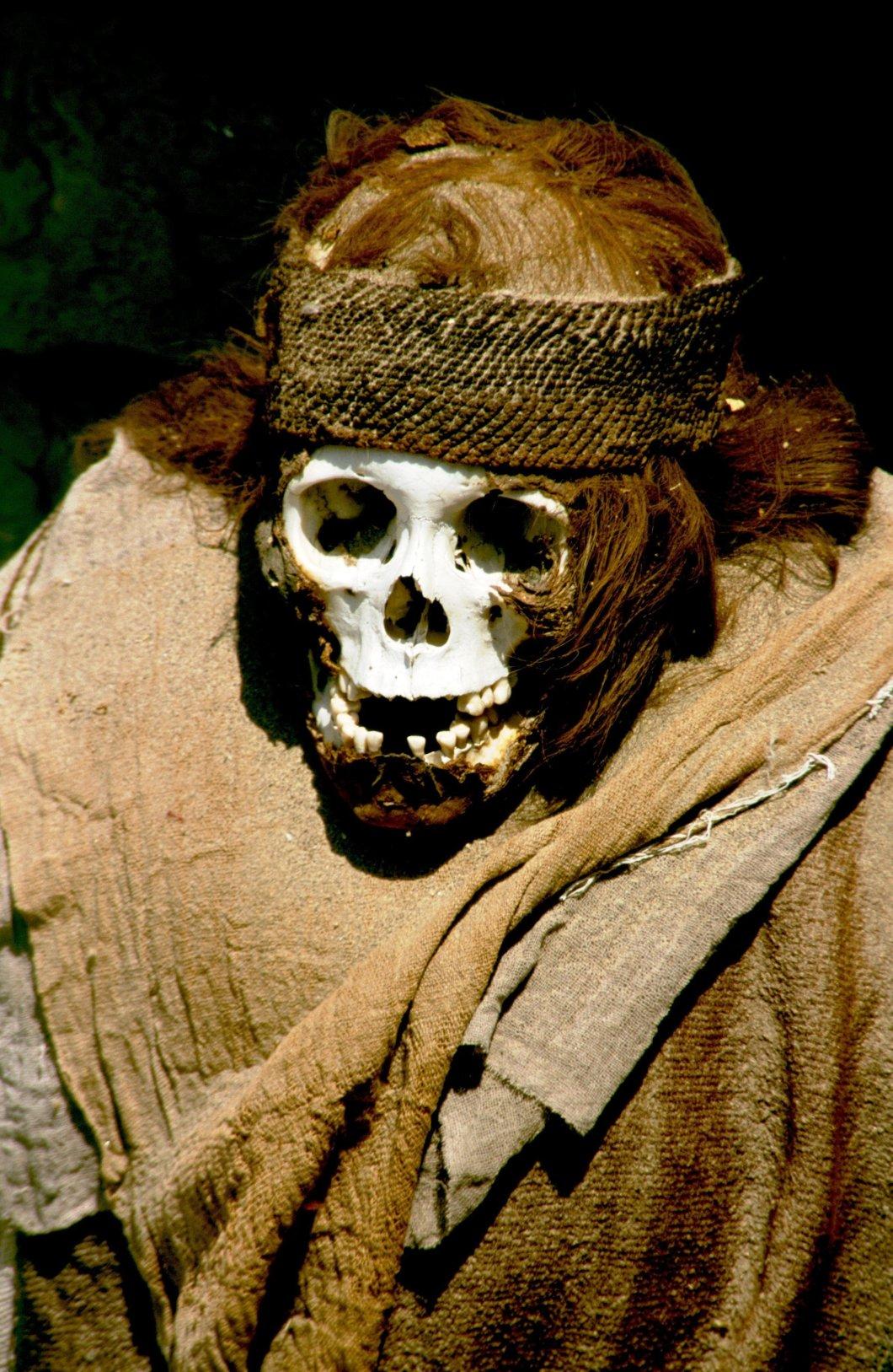 скелет с гривой волос