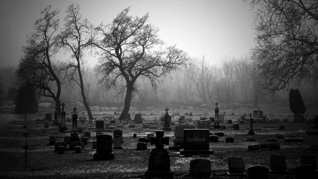 мрачный пейзаж кладбища сталл