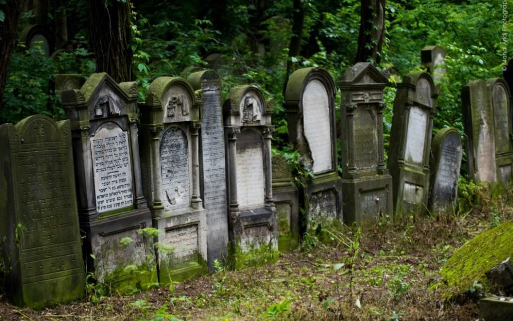 טיול מאורגן לפולין היפה והיסטוריה יהודית