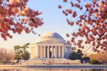 Tidal Basin Guided Tour