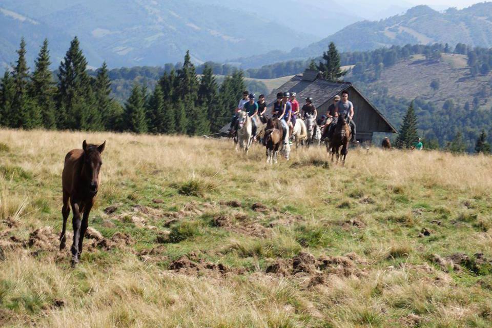 Horse riding tour - 3 by 7Cai