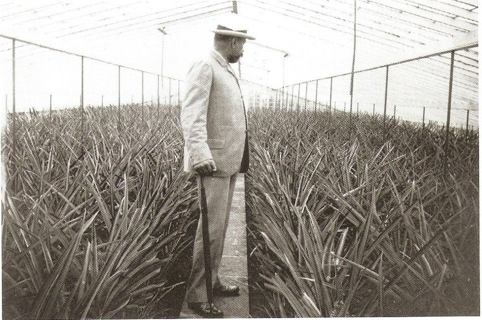 Prince of Monaco in the Azores at Arruda Pineapple Plantation