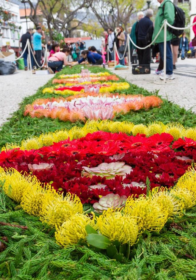Flower carpets along the central promenade of Avenida Arriaga in
