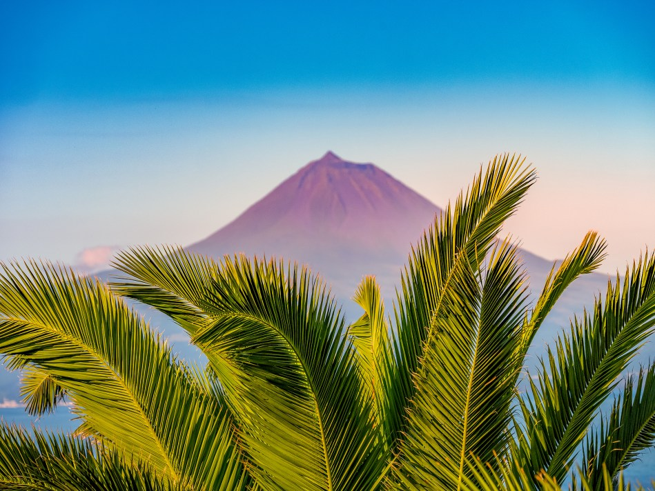 Image Of The Volcano Mountain Of Pico With Palm Trees In The For