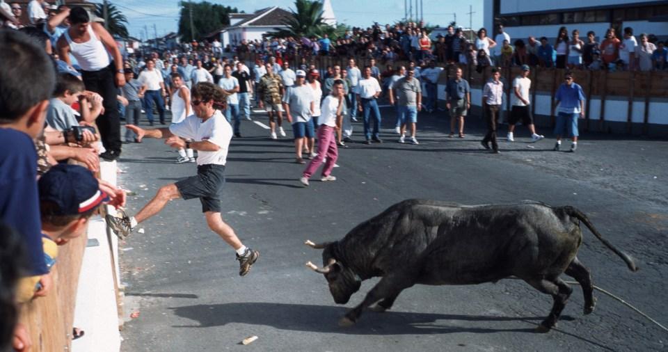 azores bull running festival on Terceira island