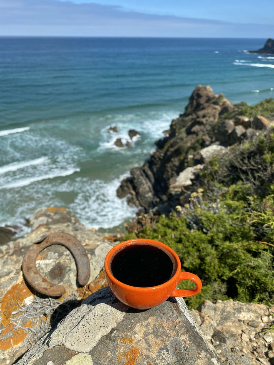 Azores Island Coffee Grown in Portugal