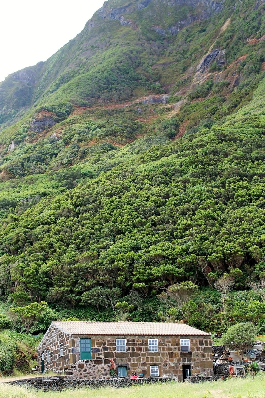 Coffee Portuguese Azores