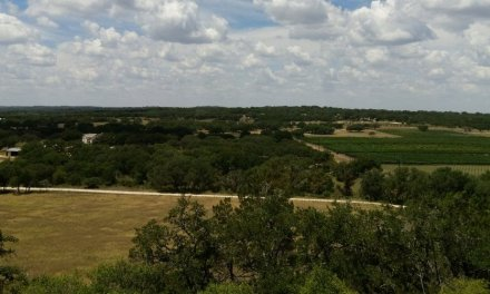8 Texas Hill Country Wineries Near Wimberley You Must Try!
