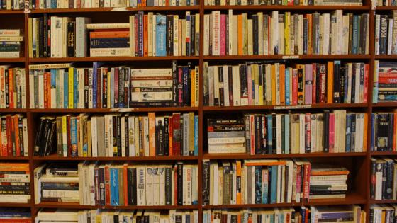 本がたくさんの本棚