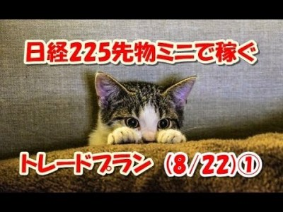 日経225先物ミニで稼ぐ~トレードプラン(8/22)①