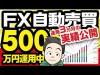 FX自動売買で500万円を運用した結果、3カ月でどれだけ稼げたのか実績公開!