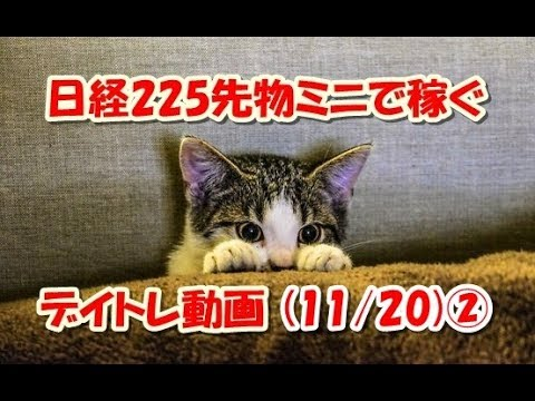 日経225先物ミニで稼ぐ~デイトレ動画(11/20)②