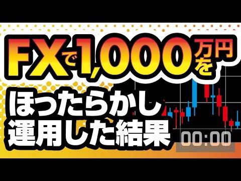 【副業OK】FXでプロが1,000万をほったらかし運用した結果、いくら資産が増えた?