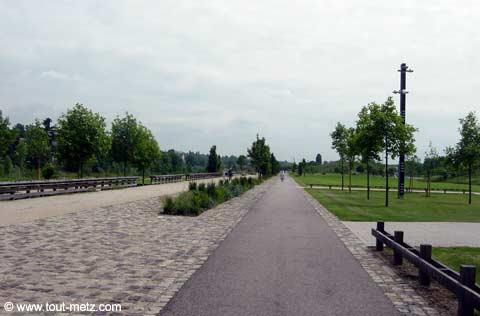 Parc de la Seille à Metz avenue centrale 1