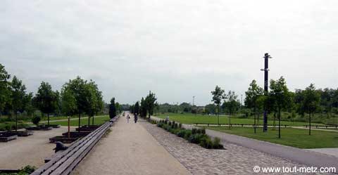 Parc de la Seille à Metz avenue centrale 3
