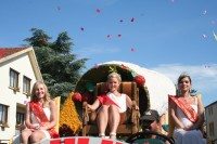 La fête des fraises de Woippy   Photo : Tout-Metz.com