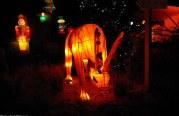 Visite au sentier des lanternes (photo reportage)
