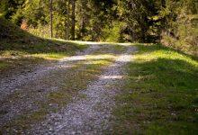 Photo of Des parcours adaptés à tous pour le Trail du Saint-Quentin