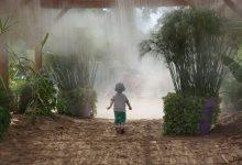 Photo of Alerte canicule cette semaine en Lorraine : des pics à 40°C