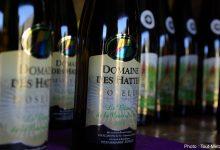 Photo of La Fête des vins de Moselle à Vic-sur-Seille, c'est ce dimanche