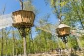 Nocturne au parc Pokeyland à Fey : gagnez vos entrées
