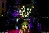 Metz : le Sentier des lanternes ferme définitivement