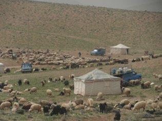 Les nomades dans les montagnes de Zagros