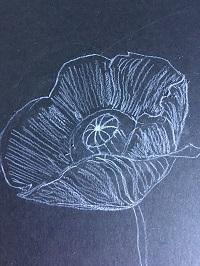 Dessiner une fleur en couleur très simplement