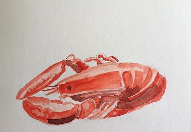 Comment peindre un homard à l'aquarelle facilement