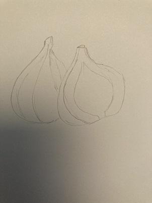 Apprendre à dessiner une figue réaliste en 5 minutes
