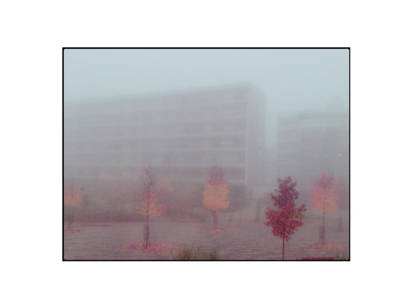 photographie immeuble brouillard by Anna Yurienen Gallego Artiste Photographe