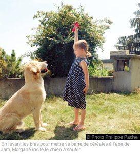En levant les bras pour mettre sa barre de céréales à l'abri de Jam, Morgane incite le chien à sauter