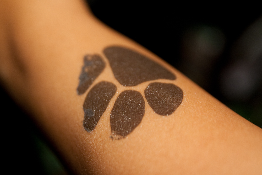 Des Tattoos pour «Les Pattounes»
