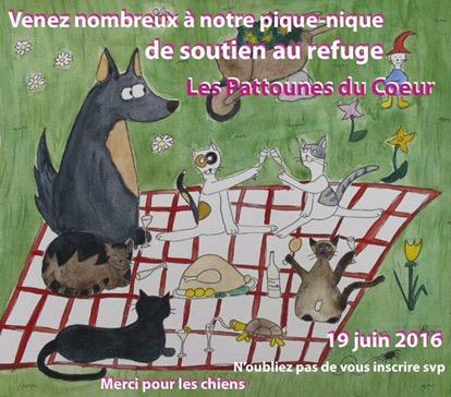 """3ème pique-nique des """"Pattounes Du Coeur"""""""