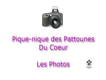 """Les photos du pique-nique des """"Pattounes Du Coeur"""""""