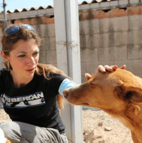 Premier reportage – Refuge Ribercan, Carcaïxent, Espagne